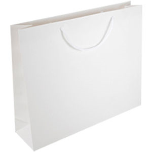 Laminated Gift Bag