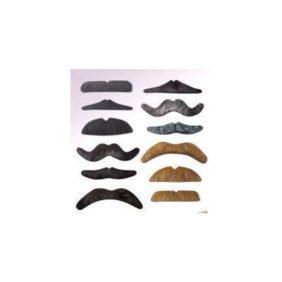 Mustache Imitation Set