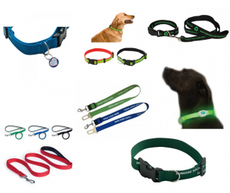 Pet Collars, Leads & Harnesses